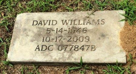 WILLIAMS, DAVID - Lincoln County, Arkansas   DAVID WILLIAMS - Arkansas Gravestone Photos
