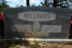 WILLIAMS, EARNEST - Lincoln County, Arkansas | EARNEST WILLIAMS - Arkansas Gravestone Photos