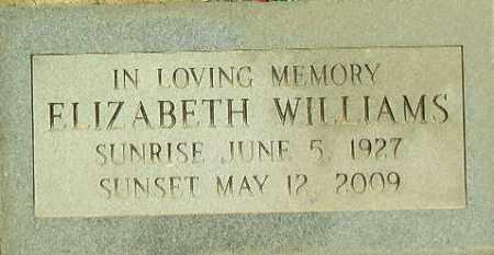 WILLIAMS, ELIZABETH - Lincoln County, Arkansas | ELIZABETH WILLIAMS - Arkansas Gravestone Photos