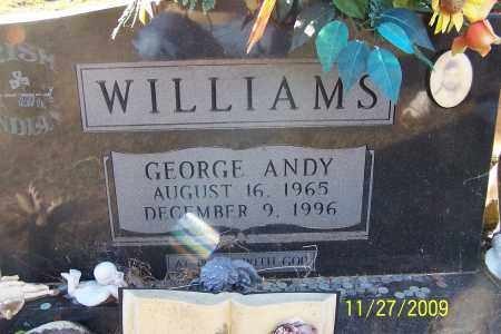 WILLIAMS, GEORGE ANDY - Lincoln County, Arkansas | GEORGE ANDY WILLIAMS - Arkansas Gravestone Photos