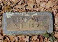 WILLIAMS, INFANT - Lincoln County, Arkansas | INFANT WILLIAMS - Arkansas Gravestone Photos