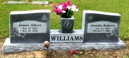 WILLIAMS, JUANITA - Lincoln County, Arkansas | JUANITA WILLIAMS - Arkansas Gravestone Photos