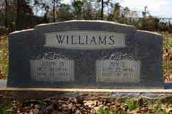 WILLIAMS, IVY - Lincoln County, Arkansas | IVY WILLIAMS - Arkansas Gravestone Photos