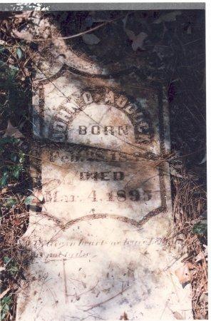 ADCOCK, JOHN D. - Little River County, Arkansas | JOHN D. ADCOCK - Arkansas Gravestone Photos