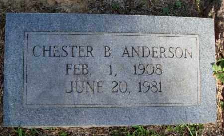 ANDERSON, CHESTER B - Little River County, Arkansas | CHESTER B ANDERSON - Arkansas Gravestone Photos