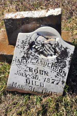 ANDERSON, MARY E - Little River County, Arkansas   MARY E ANDERSON - Arkansas Gravestone Photos