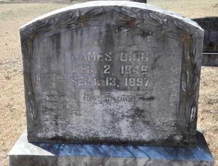 BIRD, JAMES - Little River County, Arkansas | JAMES BIRD - Arkansas Gravestone Photos