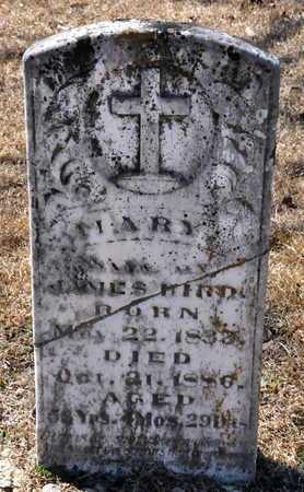 BIRD, MARY - Little River County, Arkansas | MARY BIRD - Arkansas Gravestone Photos