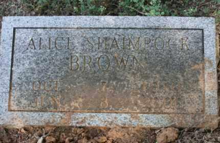 BROWN, ALICE - Little River County, Arkansas   ALICE BROWN - Arkansas Gravestone Photos