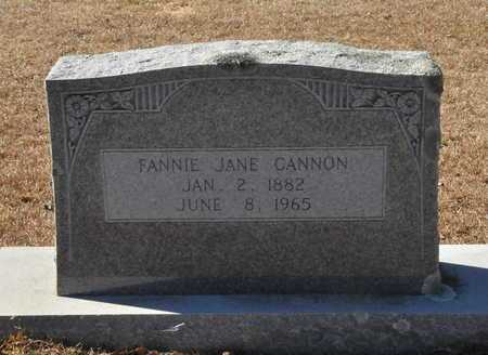 CANNON, FANNIE JANE - Little River County, Arkansas | FANNIE JANE CANNON - Arkansas Gravestone Photos