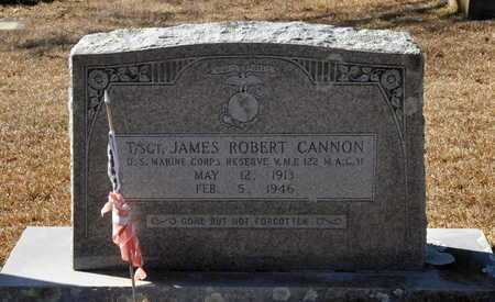 CANNON (VETERAN), JAMES ROBERT - Little River County, Arkansas | JAMES ROBERT CANNON (VETERAN) - Arkansas Gravestone Photos