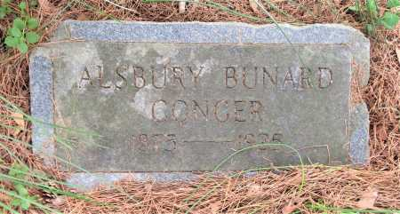 CONGER, ALSBURY BUNARD - Little River County, Arkansas | ALSBURY BUNARD CONGER - Arkansas Gravestone Photos