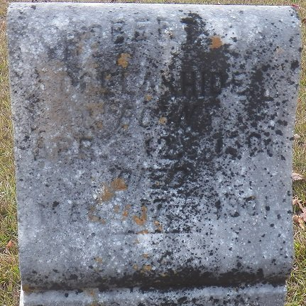 DOLLARHIDE, ROBERT - Little River County, Arkansas | ROBERT DOLLARHIDE - Arkansas Gravestone Photos