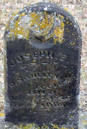 ECOLES, JOSEPH E - Little River County, Arkansas | JOSEPH E ECOLES - Arkansas Gravestone Photos