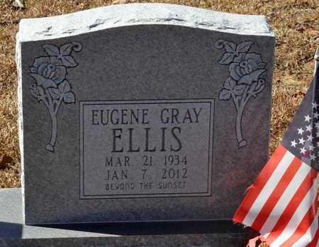 ELLIS, EUGENE GRAY - Little River County, Arkansas | EUGENE GRAY ELLIS - Arkansas Gravestone Photos