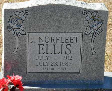 ELLIS, J NORFLEET - Little River County, Arkansas | J NORFLEET ELLIS - Arkansas Gravestone Photos