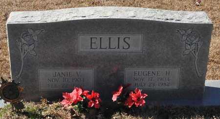 ELLIS, JANIE V - Little River County, Arkansas | JANIE V ELLIS - Arkansas Gravestone Photos