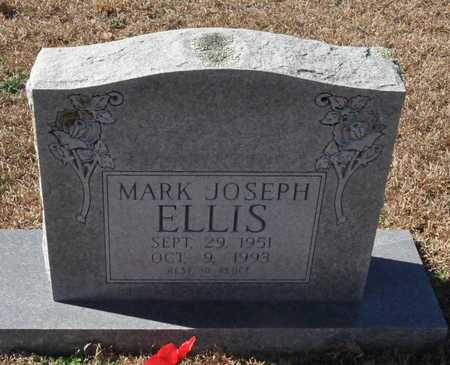 ELLIS, MARK JOSEPH - Little River County, Arkansas | MARK JOSEPH ELLIS - Arkansas Gravestone Photos