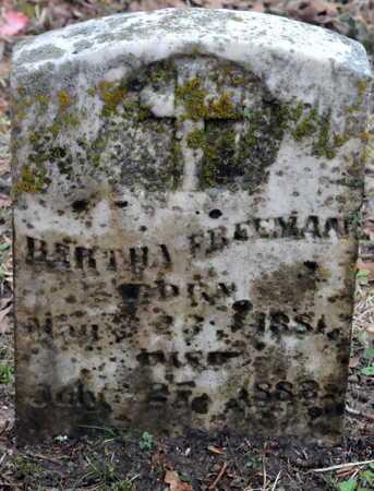 FREEMAN, BERTHA - Little River County, Arkansas | BERTHA FREEMAN - Arkansas Gravestone Photos