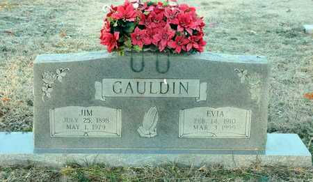 GAULDIN, EVIA - Little River County, Arkansas | EVIA GAULDIN - Arkansas Gravestone Photos