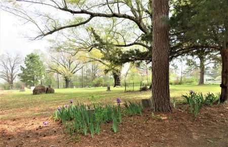 *OVERVIEW,  - Little River County, Arkansas    *OVERVIEW - Arkansas Gravestone Photos