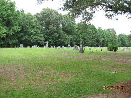 *OVERVIEW,  - Little River County, Arkansas |  *OVERVIEW - Arkansas Gravestone Photos