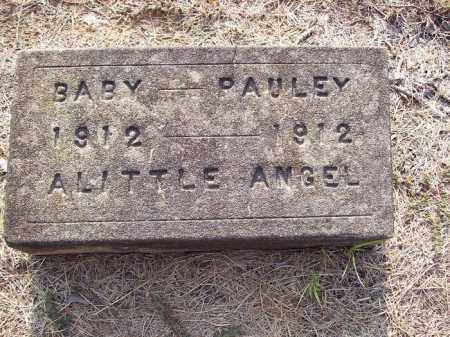 PAULEY, INFANT TWIN - Little River County, Arkansas | INFANT TWIN PAULEY - Arkansas Gravestone Photos