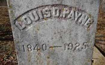 PAYNE, LOUIS D (CLOSEUP) - Little River County, Arkansas | LOUIS D (CLOSEUP) PAYNE - Arkansas Gravestone Photos