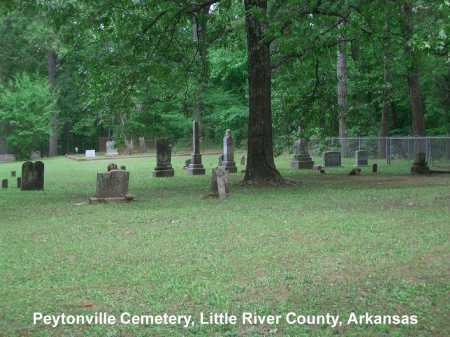 *PEYTONVILLE CEMETERY,  - Little River County, Arkansas |  *PEYTONVILLE CEMETERY - Arkansas Gravestone Photos