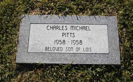 PITTS, CHARLES MICHAEL - Little River County, Arkansas | CHARLES MICHAEL PITTS - Arkansas Gravestone Photos