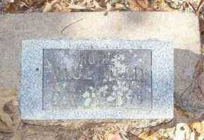 REED, PAUL - Little River County, Arkansas | PAUL REED - Arkansas Gravestone Photos