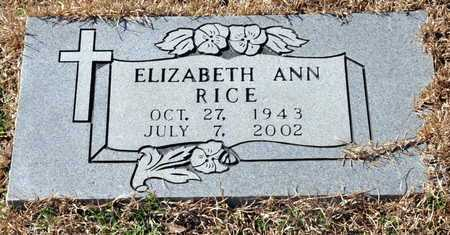 RICE, ELIZABETH ANN - Little River County, Arkansas | ELIZABETH ANN RICE - Arkansas Gravestone Photos