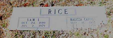 RICE, SAM L - Little River County, Arkansas | SAM L RICE - Arkansas Gravestone Photos