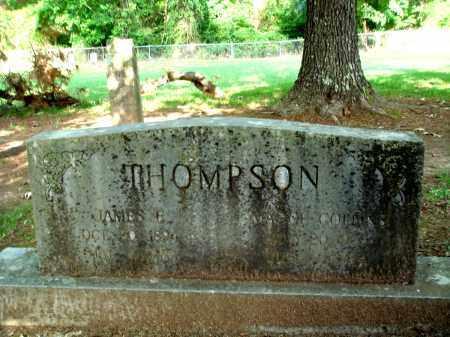 THOMPSON, JAMES E - Little River County, Arkansas | JAMES E THOMPSON - Arkansas Gravestone Photos