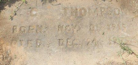 THOMPSON, L. C. - Little River County, Arkansas | L. C. THOMPSON - Arkansas Gravestone Photos
