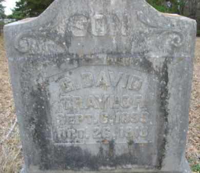 TRAYLOR, G DAVID - Little River County, Arkansas | G DAVID TRAYLOR - Arkansas Gravestone Photos
