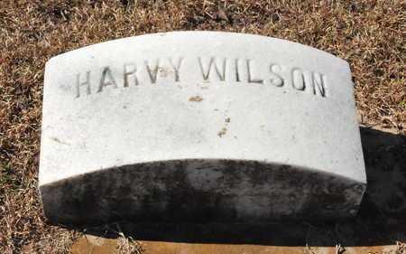 WILSON, HARVEY - Little River County, Arkansas | HARVEY WILSON - Arkansas Gravestone Photos