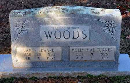 WOODS, MOLLY MAE - Little River County, Arkansas | MOLLY MAE WOODS - Arkansas Gravestone Photos