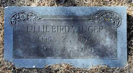 BIRD YAUGER, LILLIE - Little River County, Arkansas | LILLIE BIRD YAUGER - Arkansas Gravestone Photos