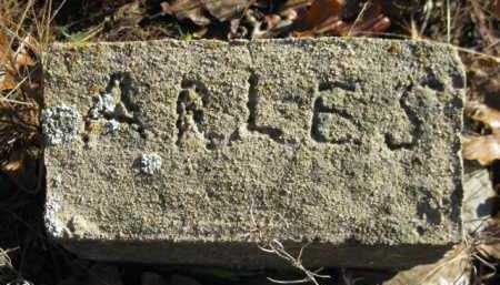 ARLES, UNKNOWN - Logan County, Arkansas | UNKNOWN ARLES - Arkansas Gravestone Photos