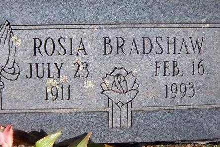 BRADSHAW, ROSIA - Logan County, Arkansas | ROSIA BRADSHAW - Arkansas Gravestone Photos