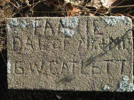 CATLETT, FANNIE - Logan County, Arkansas | FANNIE CATLETT - Arkansas Gravestone Photos