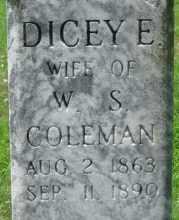 COLEMAN, DICEY E. (CLOSEUP) - Logan County, Arkansas | DICEY E. (CLOSEUP) COLEMAN - Arkansas Gravestone Photos