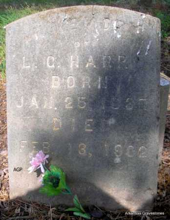 HARP, L  C - Logan County, Arkansas | L  C HARP - Arkansas Gravestone Photos