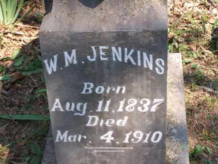 JENKINS, WILLIAMS M - Logan County, Arkansas | WILLIAMS M JENKINS - Arkansas Gravestone Photos