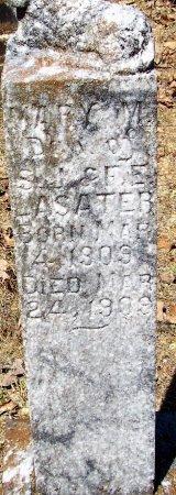 LASATER, MARY M (CLOSE UP) - Logan County, Arkansas | MARY M (CLOSE UP) LASATER - Arkansas Gravestone Photos