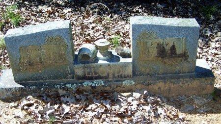 LLOYD, CHARLES F - Logan County, Arkansas | CHARLES F LLOYD - Arkansas Gravestone Photos