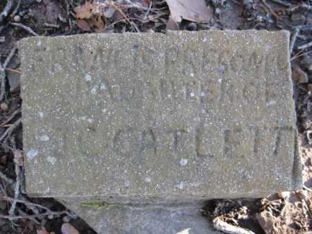 PRESONEL, FRANNIE - Logan County, Arkansas | FRANNIE PRESONEL - Arkansas Gravestone Photos