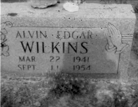 WILKINS, ALVIN - Logan County, Arkansas   ALVIN WILKINS - Arkansas Gravestone Photos