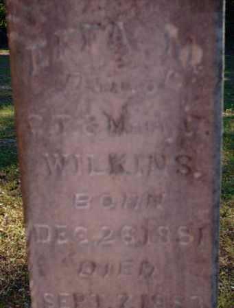 WILKINS, EFFA M - Logan County, Arkansas   EFFA M WILKINS - Arkansas Gravestone Photos
